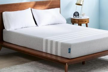 Aireloom Mattress What You Should Know