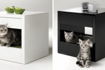 Why Choose Playtime Workshop for Buying Cat Furniture
