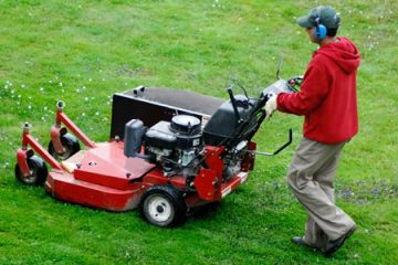 What to consider when selecting an Electric Lawn Dethatcher